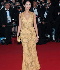 Bollywood celebs at the 66th Cannes Film Festival